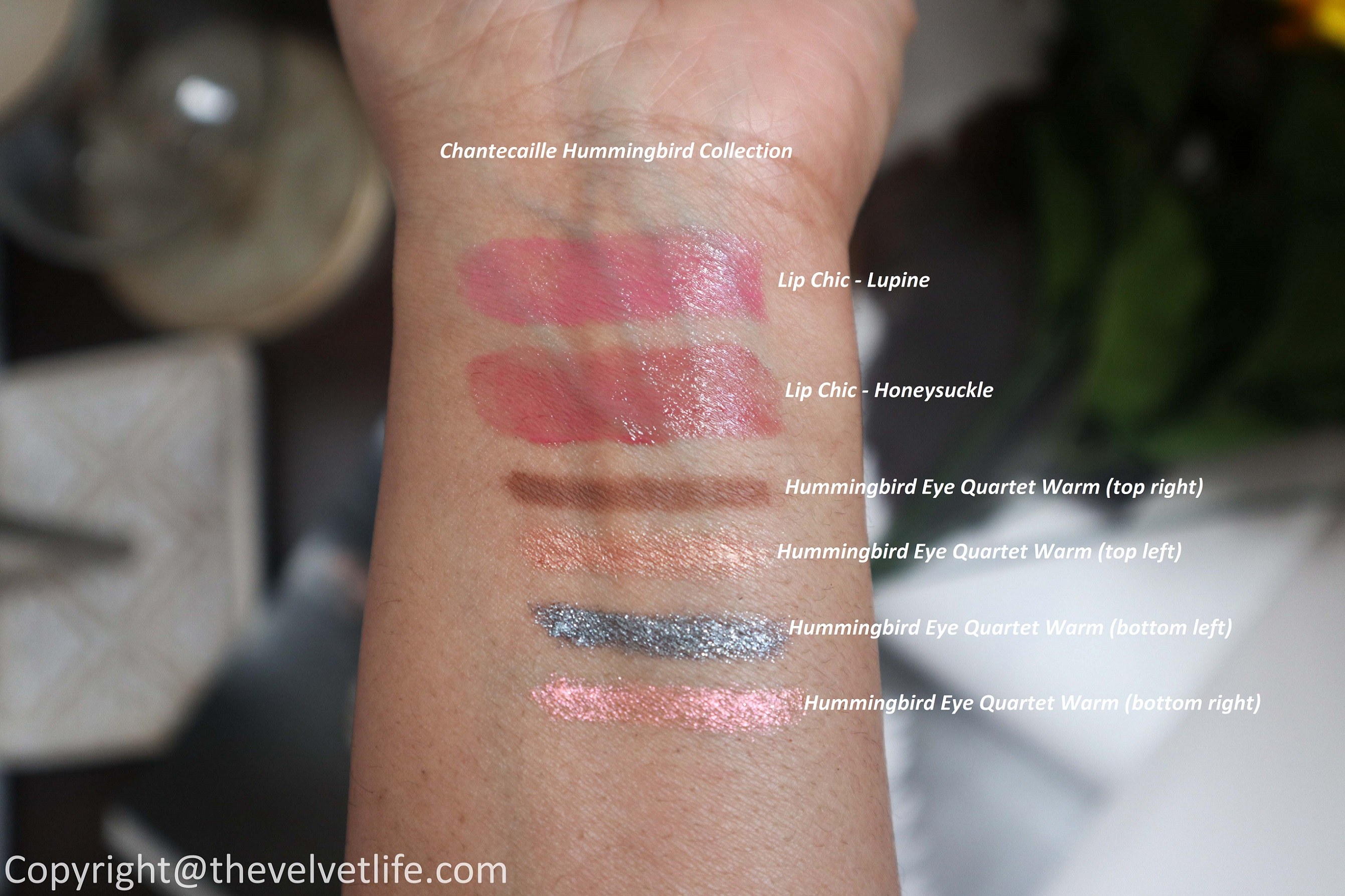 New Chantecaille Hummingbird Collection review and swatches of Eye Quartet in warm and Lip chic in shades honeysuckle, lupine spring 2020